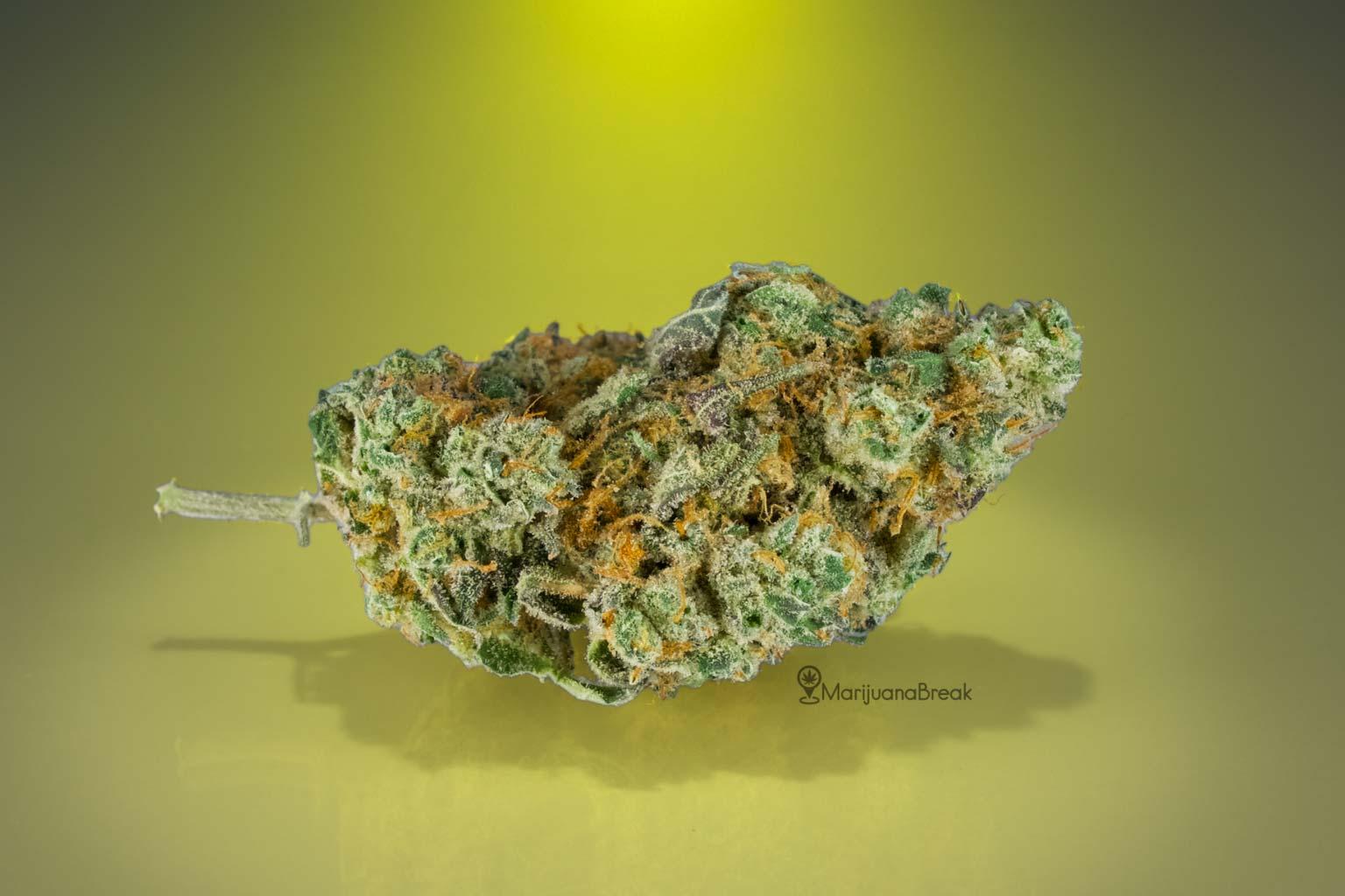 Banana Split Cannabis Strain