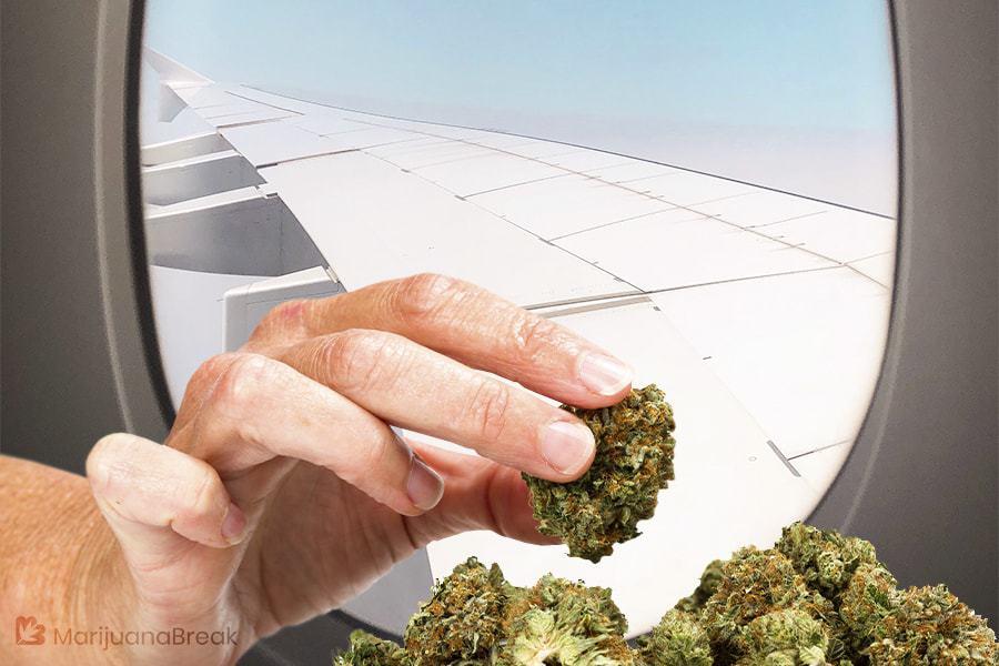 can you take medical marijuana on a plane