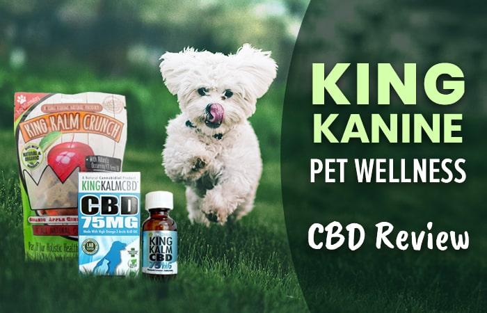 King Kanine CBD Review