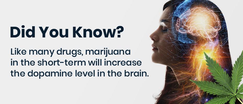 marijuana dopamine