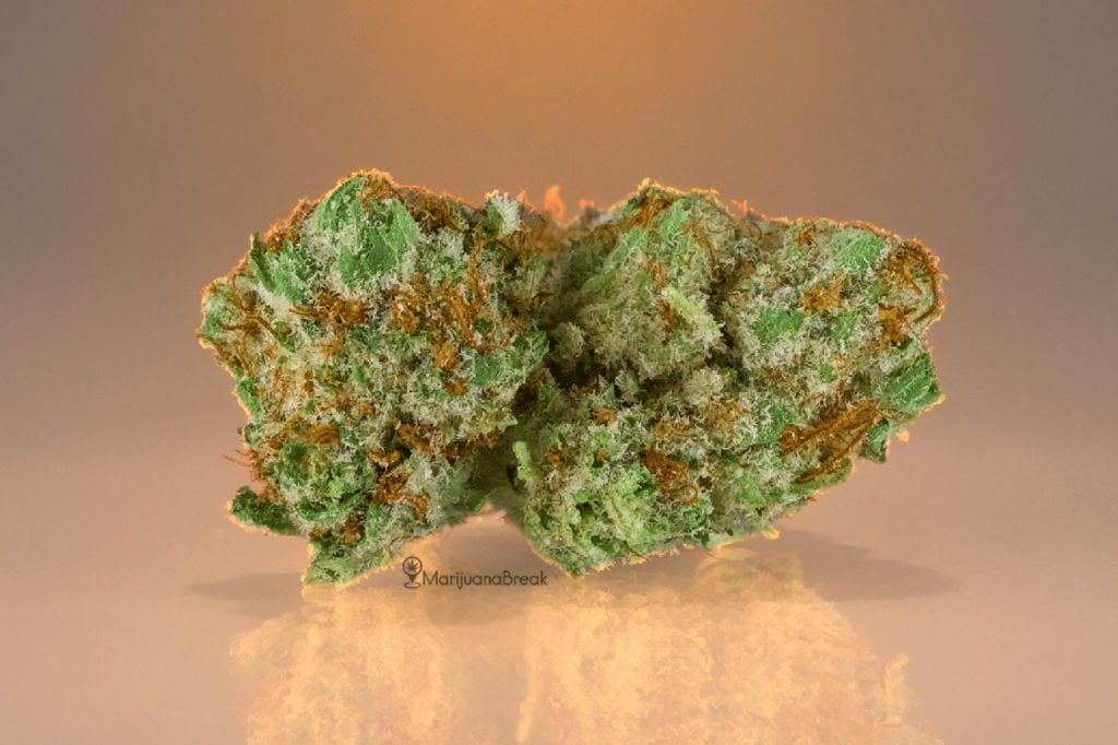 og kush marijuana strain