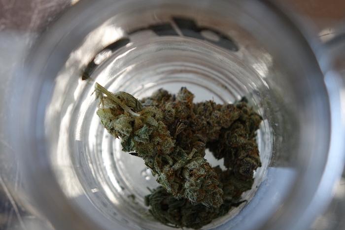 Sour OG marijuana strain