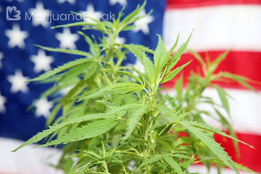 is marijuana illegal
