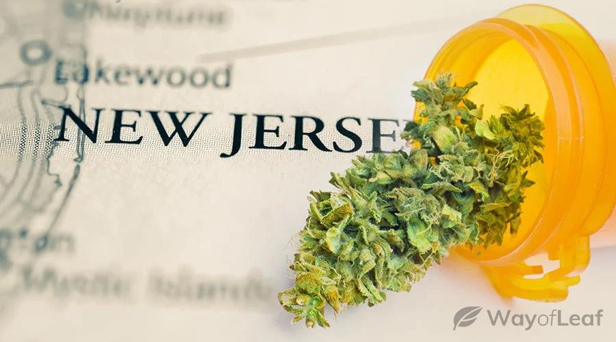 new jersey medical marijuana card