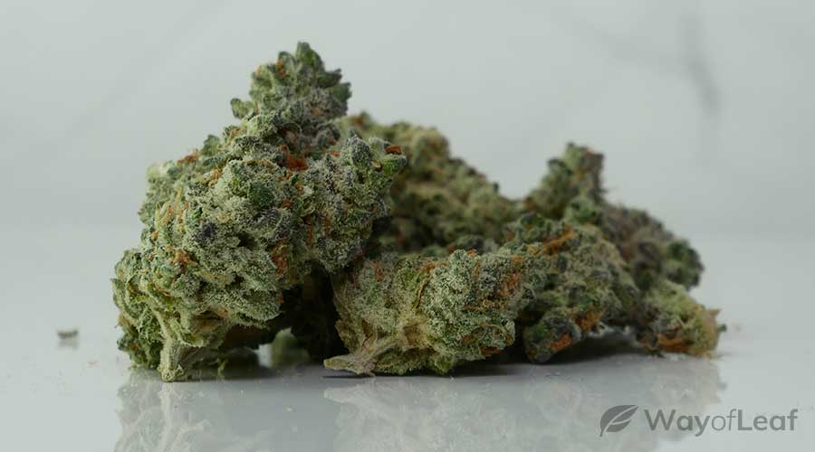 maui-wowie-review