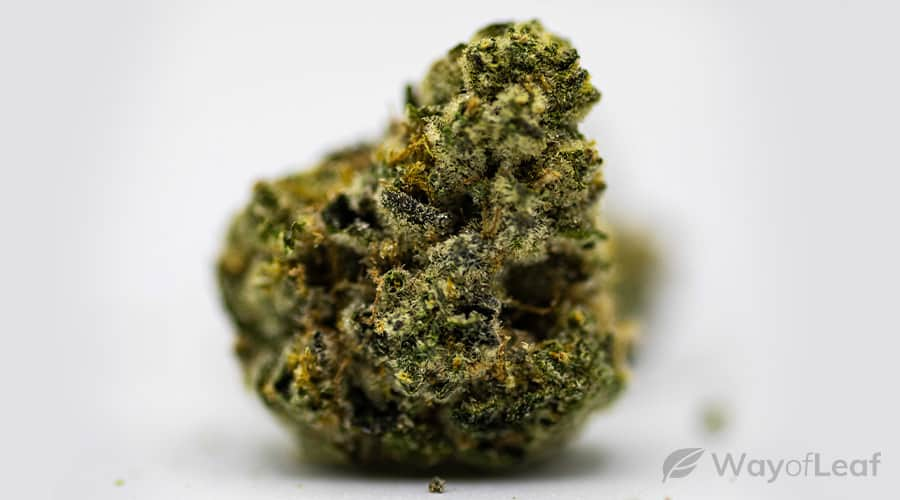 what is the wedding cake strain?