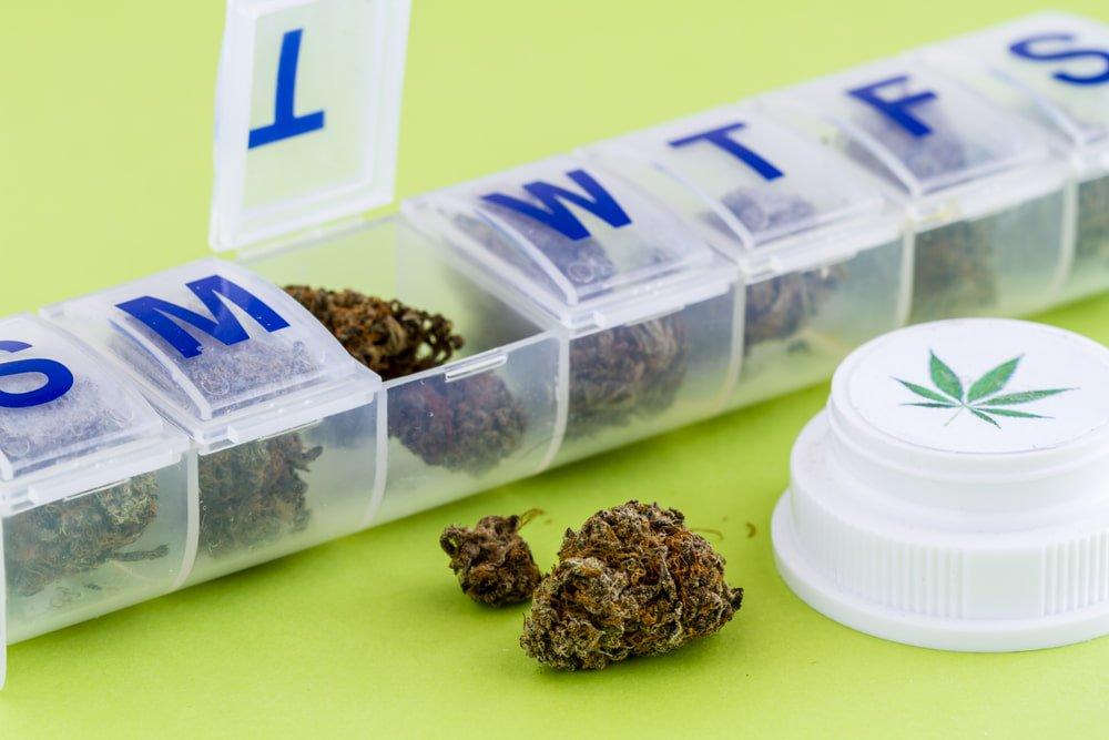 medical marijuana and back pain
