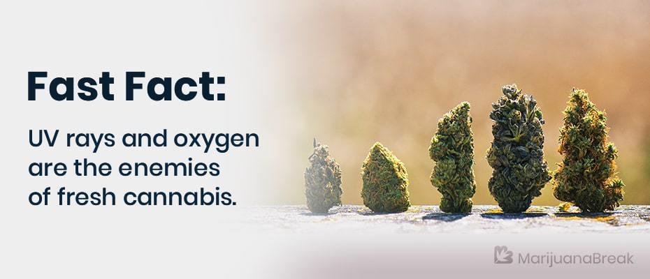 6 ways to add moisture to over dried marijuana