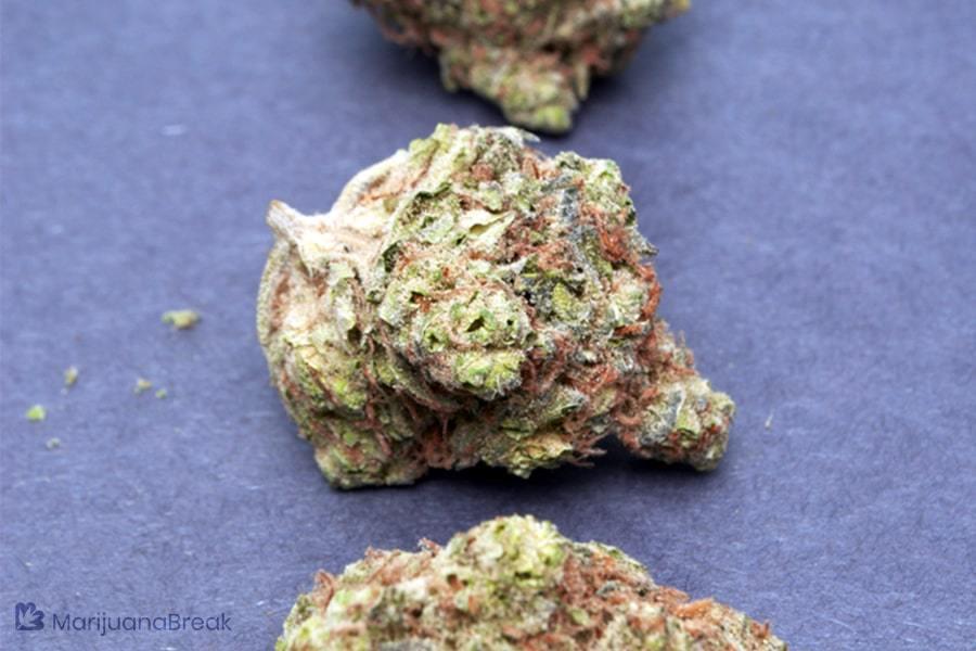 purple thai