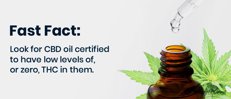 high cbd hemp oil