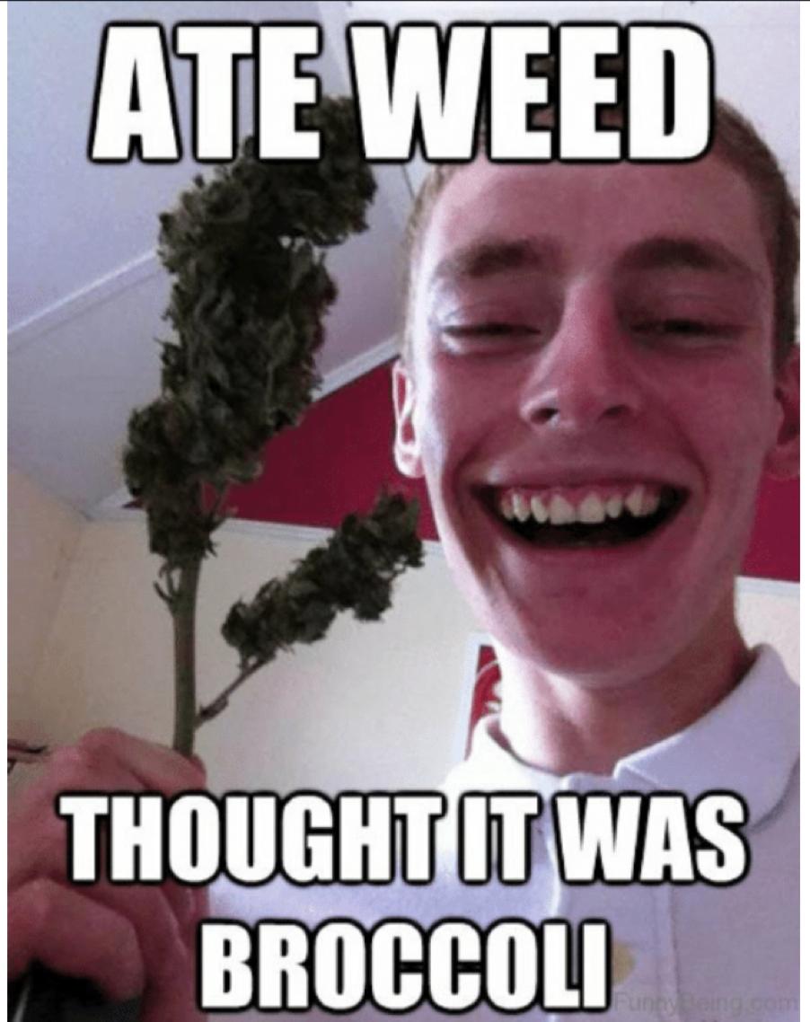 Marijuana Memes The Ultimate Collection