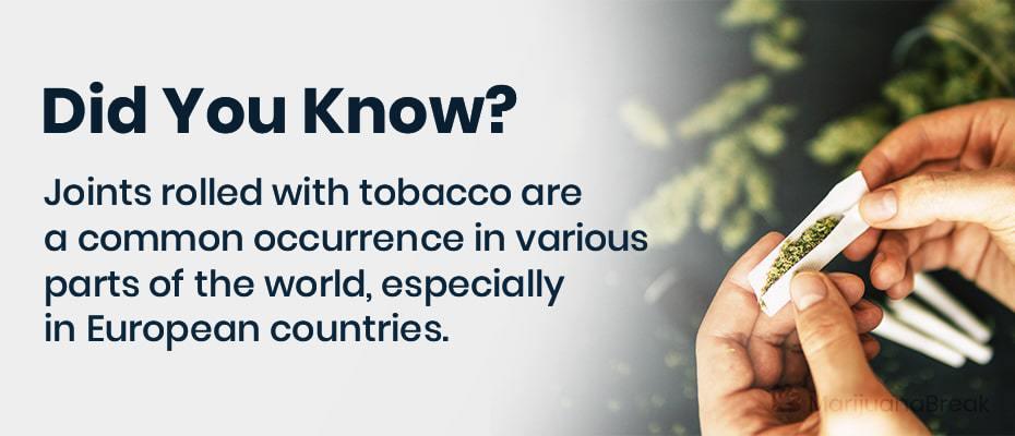 organic tobacco alternatives