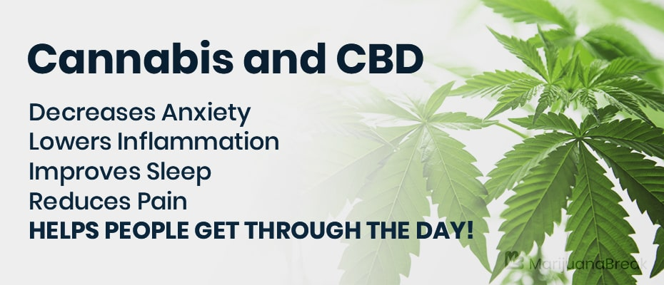 Medical Research and CBD Oil