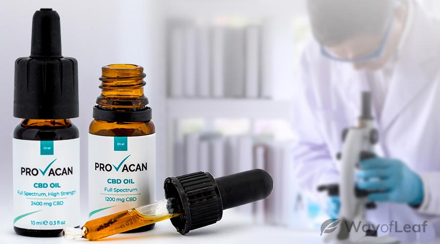 provacan cbd oil review: how did it work?