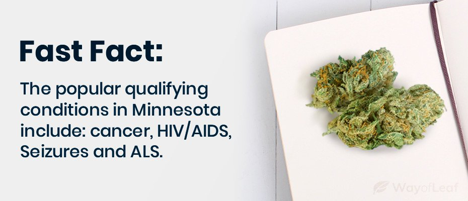 minnesota medical marijuana