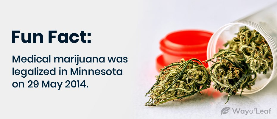 medical marijuana minnesota