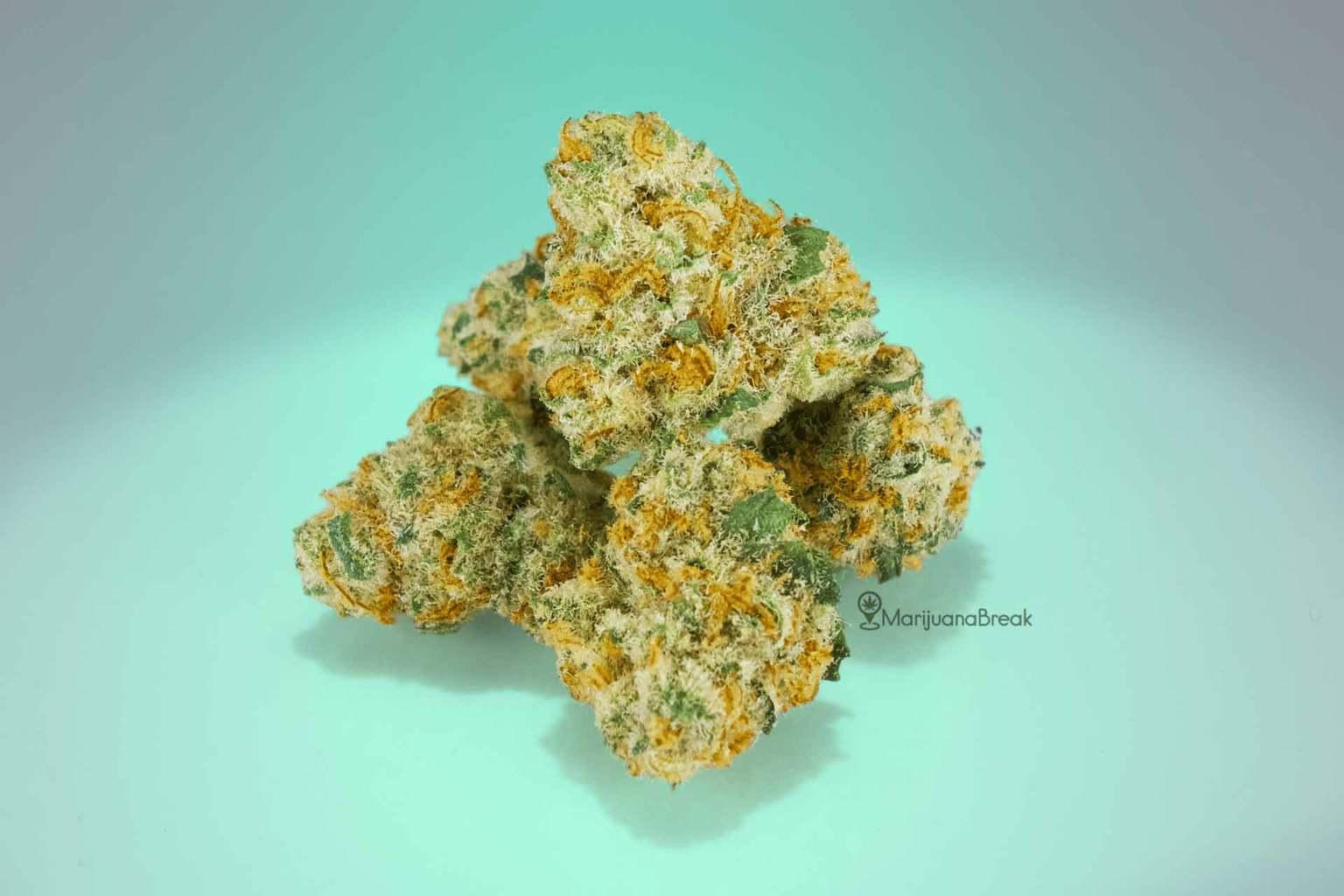 cannatonic weed