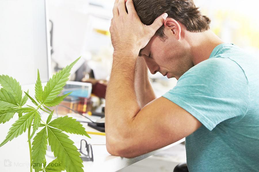 cbd failed drug test