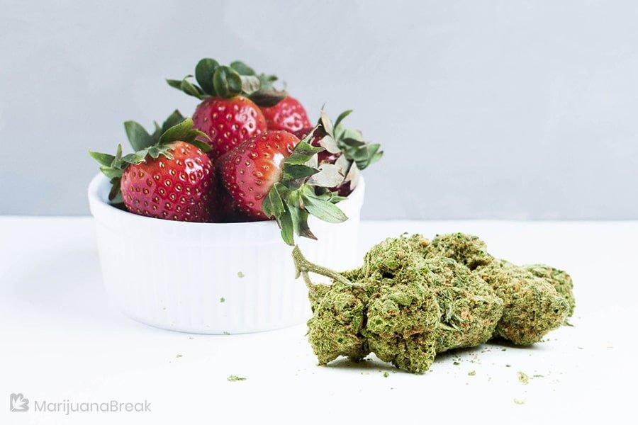 sour strawberry strain