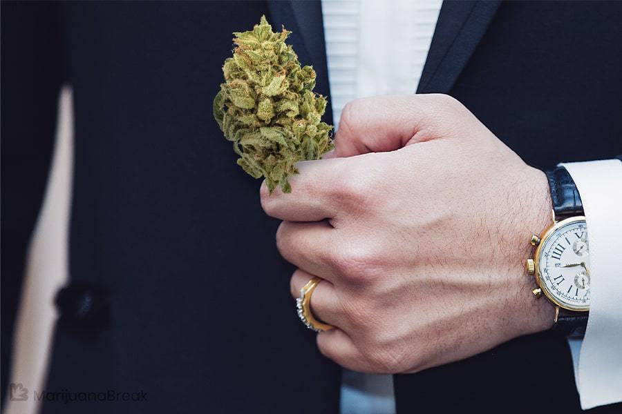 find the right strain