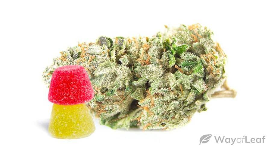 sweet-kush-strain