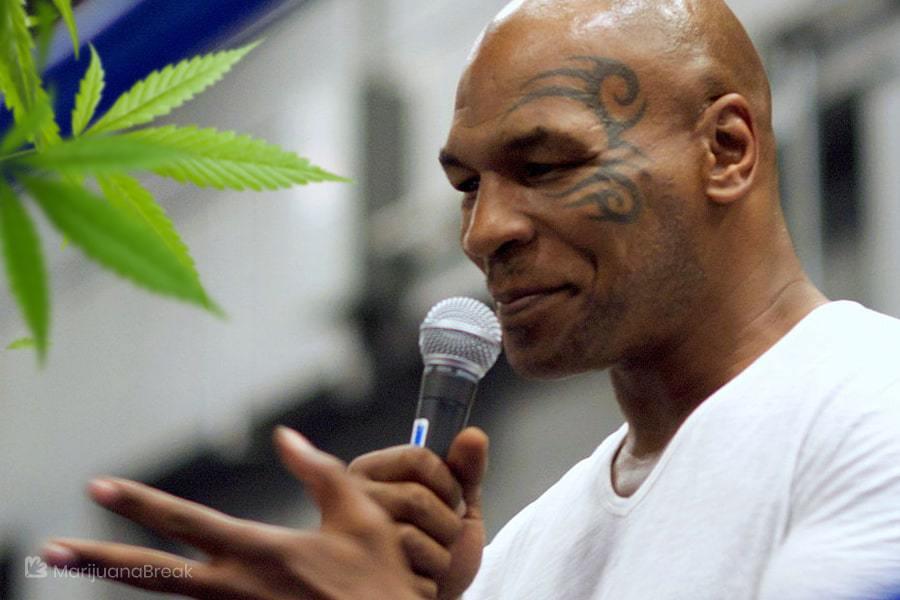 agerage medical marijuana dosage monthly