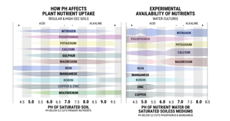 2 - Lack of Attention to pH Levels