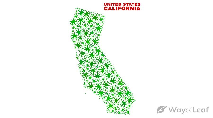 is-california-banned-cannabis-use