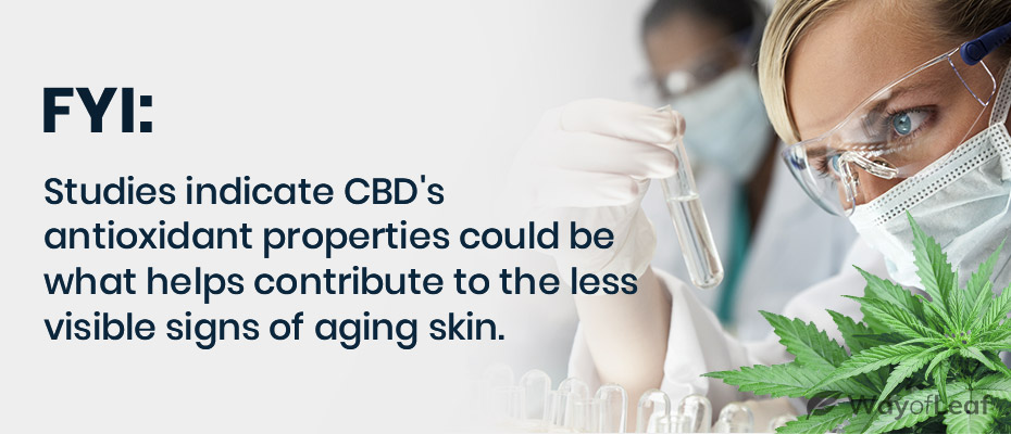 cbd oil for anti-aging
