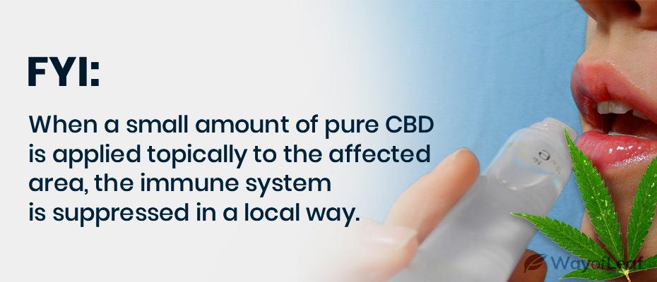 cbd oil for herpes
