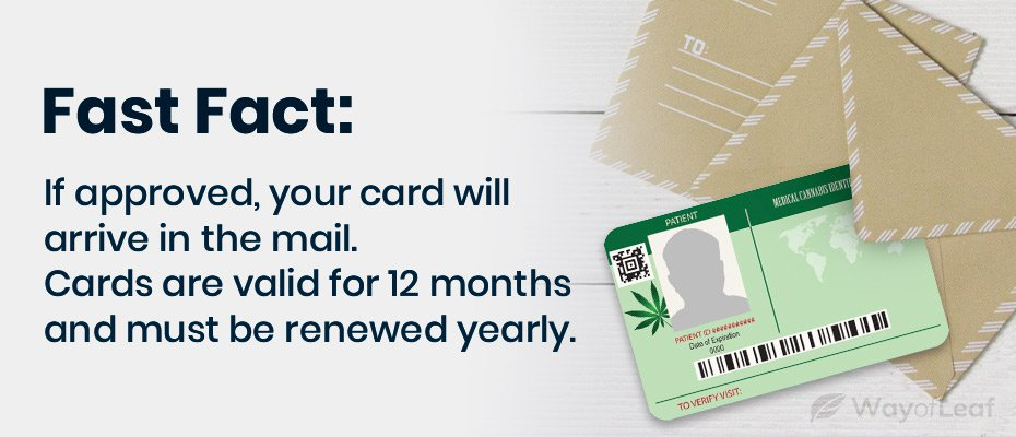 How to Renew Your Medical Marijuana Card in New Mexico?