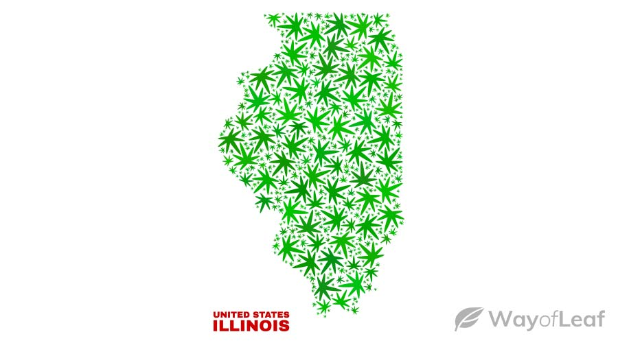 is-illinois-banned-cannabis-use