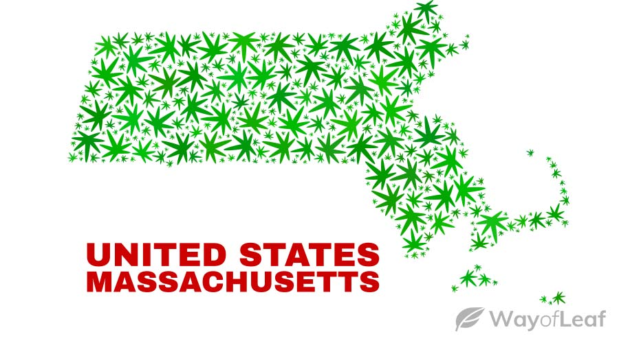 is-massachusetts-banned-cannabis-use
