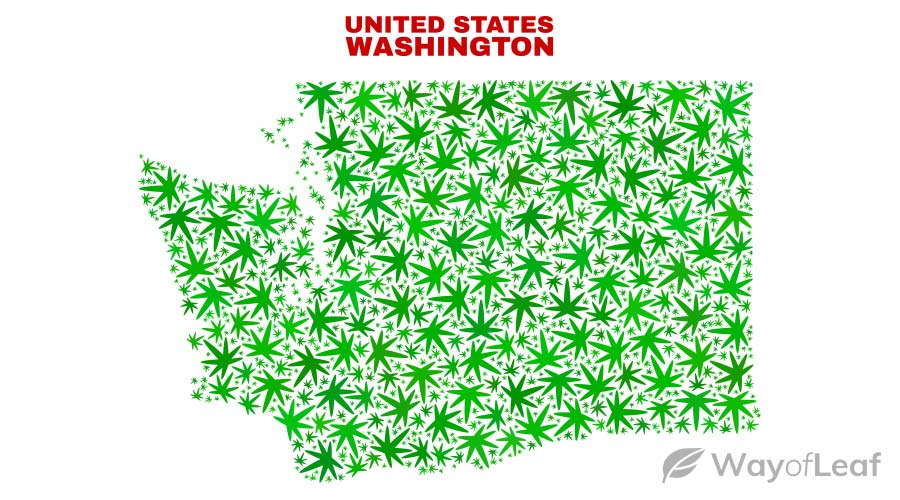 is-washington-banned-cannabis-use