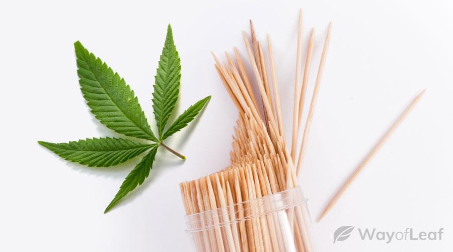 what are cbd toothpicks?