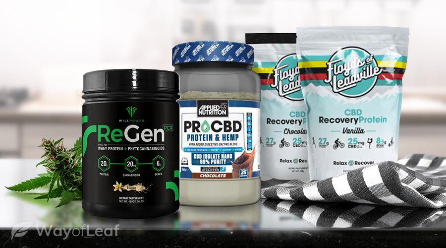 What Brand Provides the Best CBD Protein Powder for 2020?