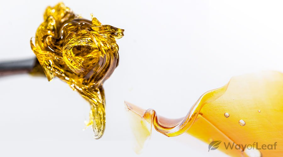 what is cbd concentrate?