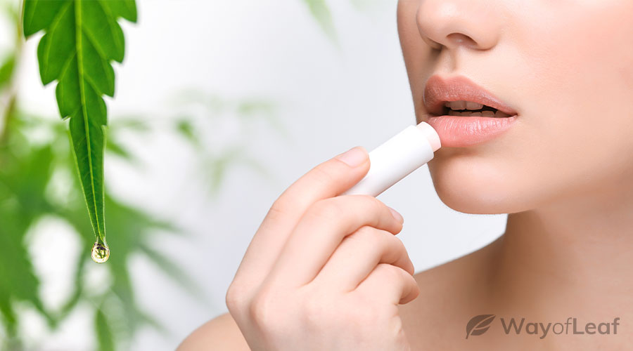 What Is CBD Lip Balm?