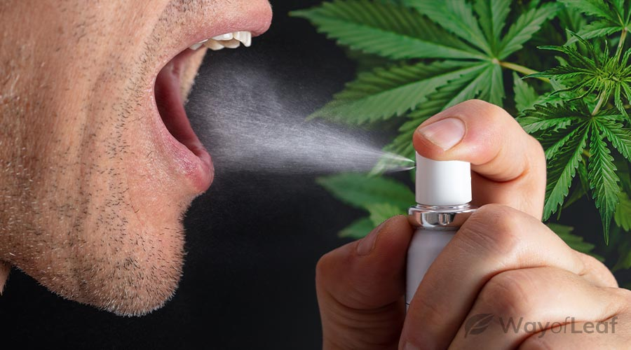 What Is CBD Spray?
