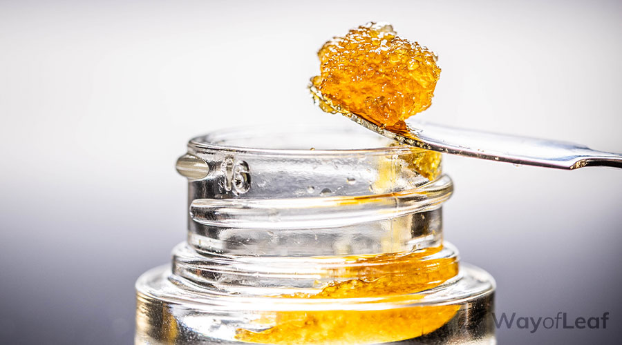 What Is CBD Wax?