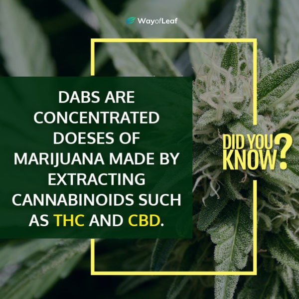 how are dabs made