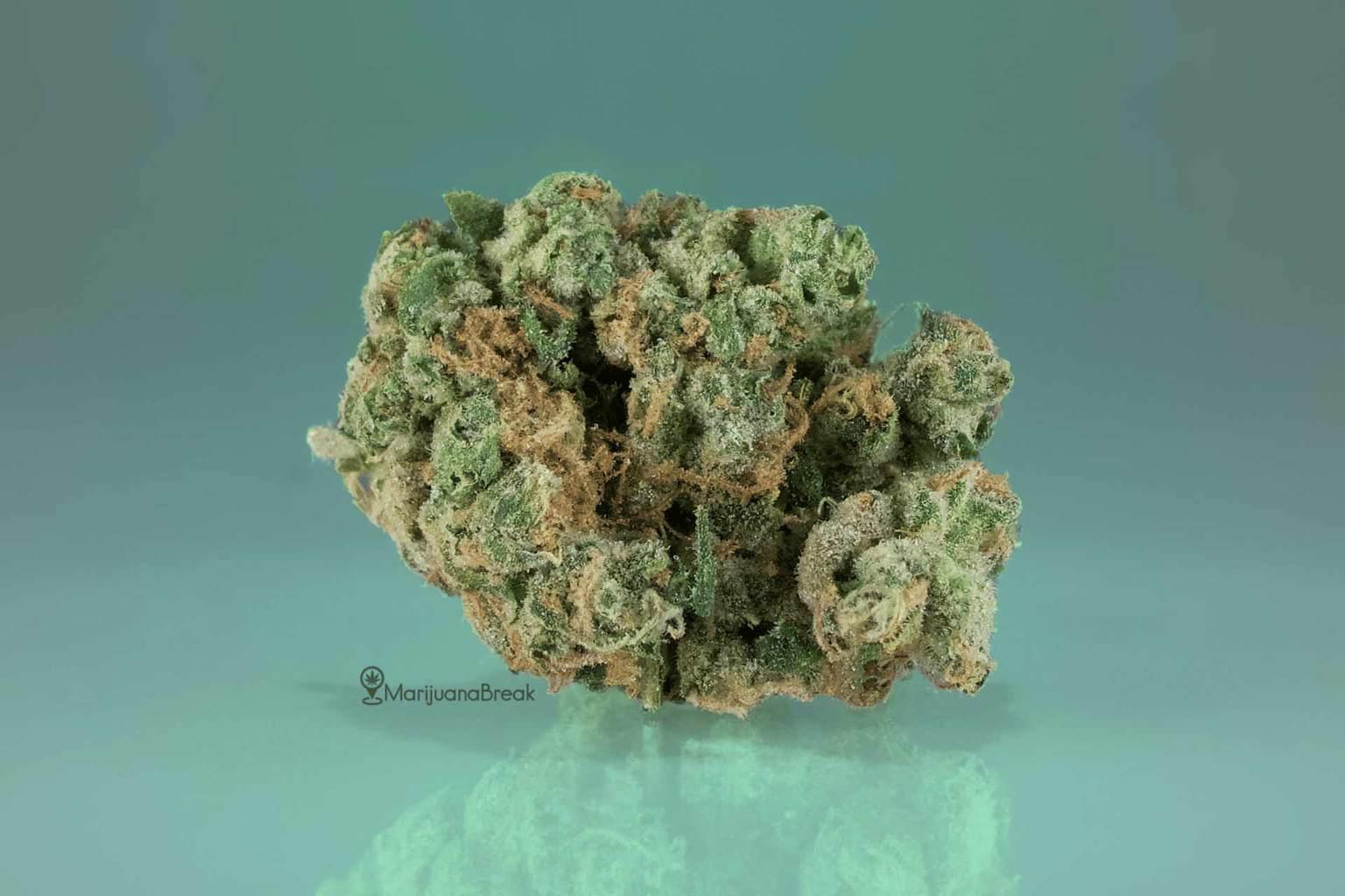 sour diesel strain review