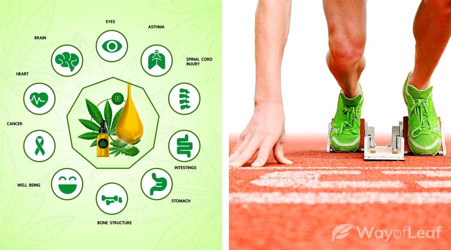cbd-for-athletes