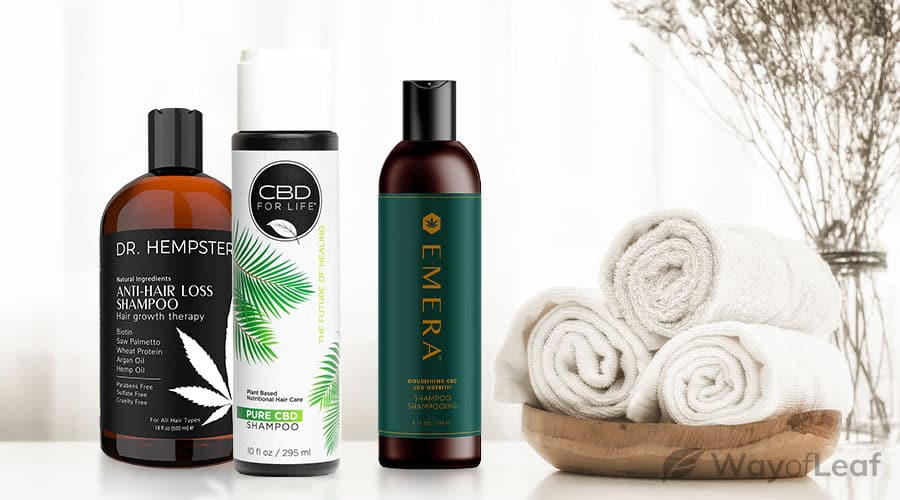 cbd shampoo - things to watch out for
