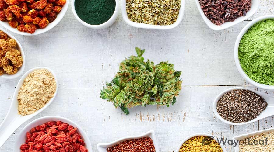 cannabis-superfood