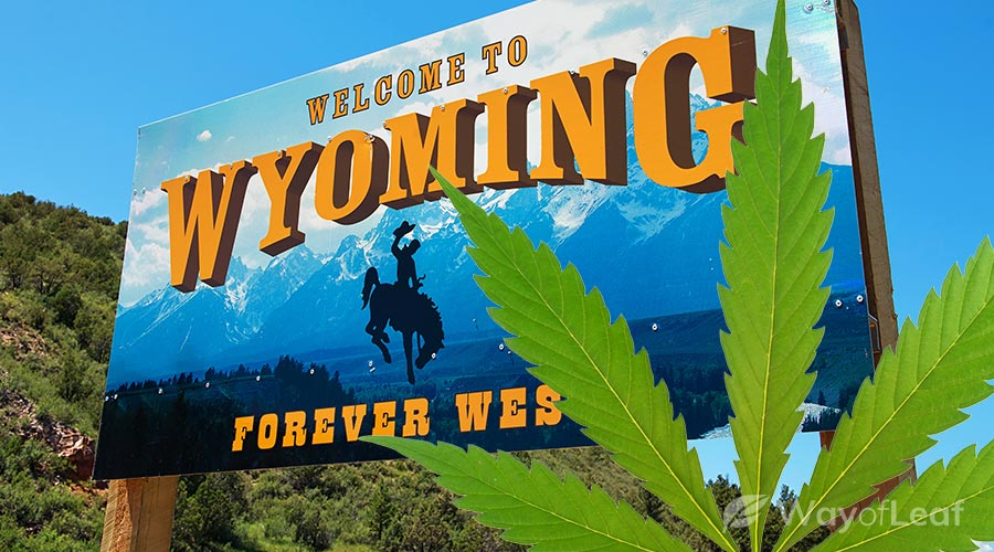 is-weed-legal-in-wyoming
