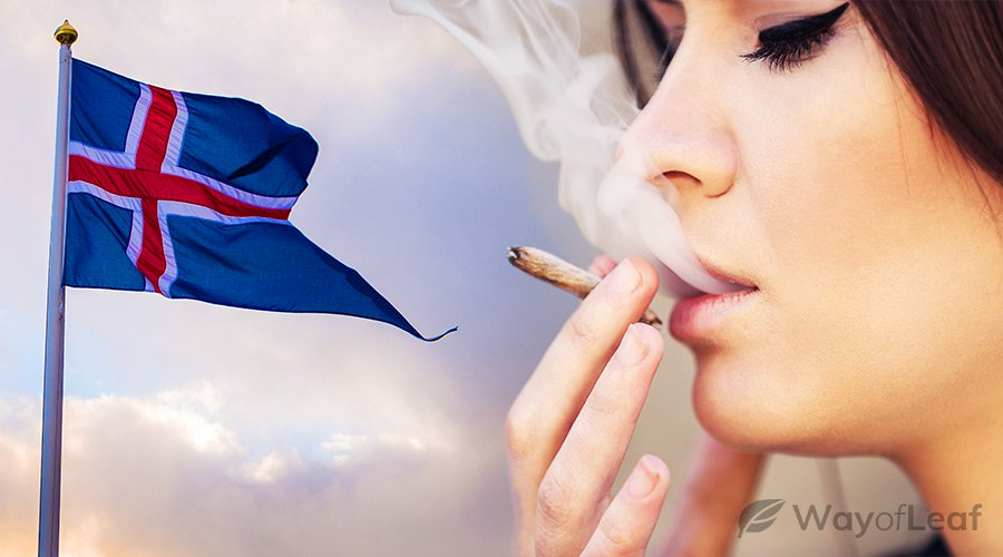 what-country-smokes-the-most-weed