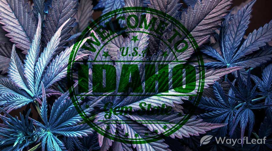 is-weed-legal-in-idaho