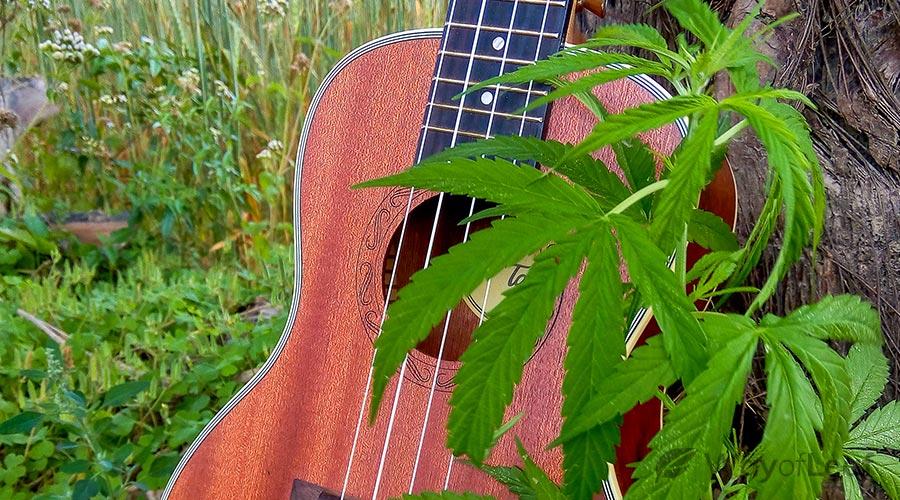 smoking-weed-and-singing