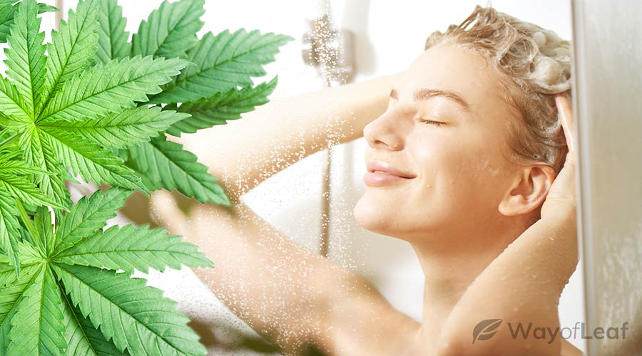 What Is CBD Shampoo?